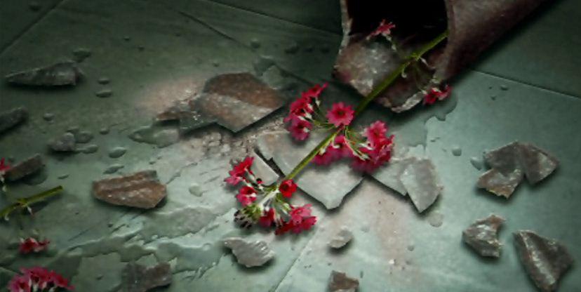 Cropped Broken Vaseg Bouquets Brickbats