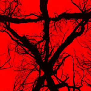 blair-witch-2016-reviews-199380-1280x0