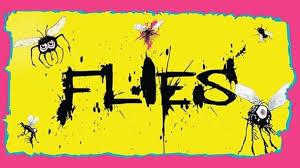 Flies1